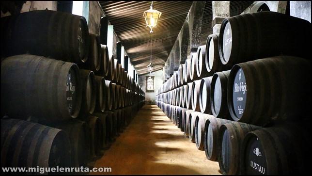 Bodegas-Lustao-Jerez_6