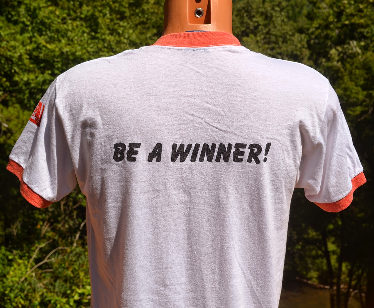 https://www.etsy.com/listing/203302961/vintage-70s-t-shirt-25000-dollar-pyramid