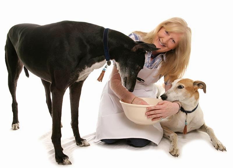 Cachorro pode comer uma vez por dia?