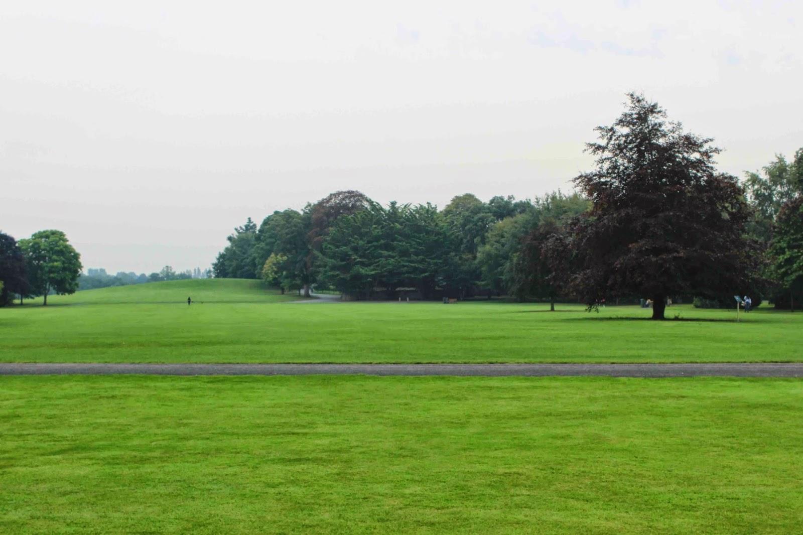 kilkenny castle green