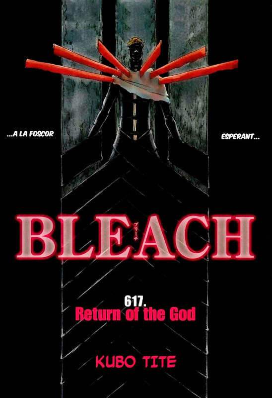 Seireitei no Fansub. Bleach 617 01