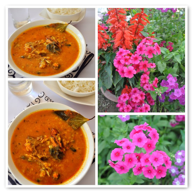 Macher Muro Die Bhaja Muger daal (Dry Roasted Yellow Lentil Soup with ...