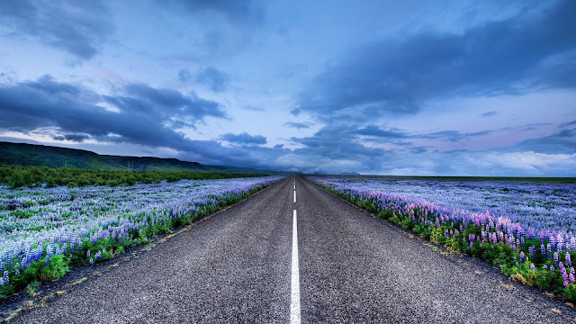 Iceland Road Landscape