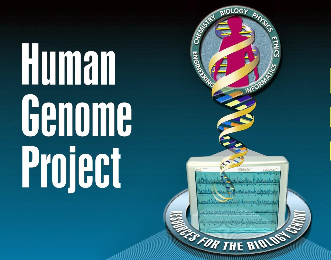 humanity programs essay