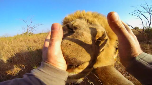 Kevin Richardson using Go-Pro Camera