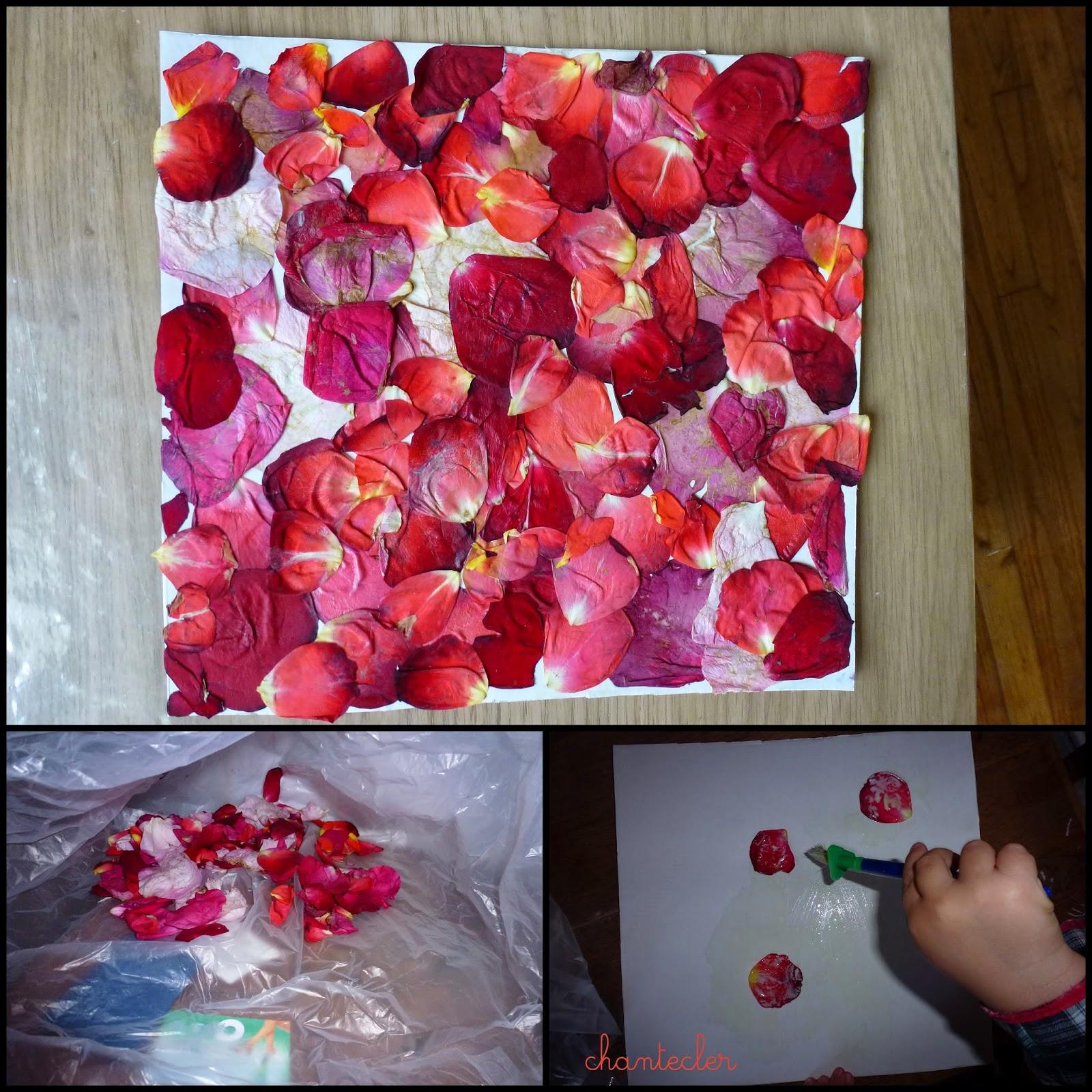 chantecler    apprendre dans la joie  collage de fleurs