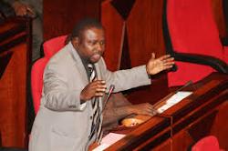 MH. JOSEPH MBILINYI - SUGU AKICHANGIA KATIKA BUNGE LA JAMHURI YA MUUNGANO WA TANZANIA
