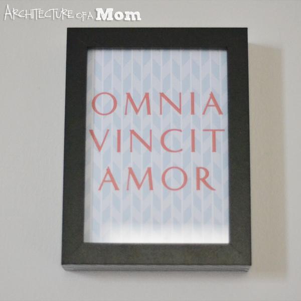 Overall Omnia Vincit Amor