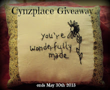 Cynzplace Giveaway( Ends May 30th