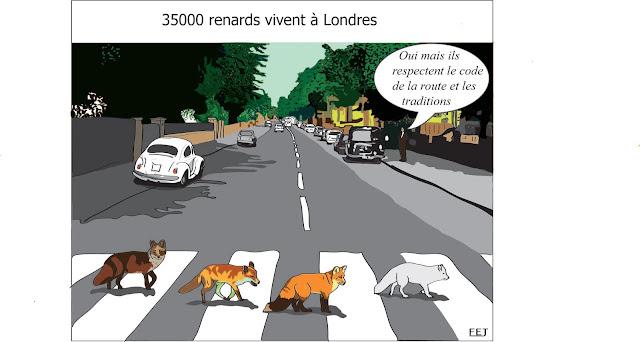 35000-renards-vivent-à-Londres-fej-dessin