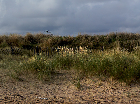 nowhere in particular, photography, the beach, travel, moody, contemporary,