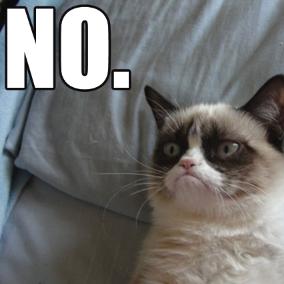 [Image: grumpy-cat-meme%2B(1).png]