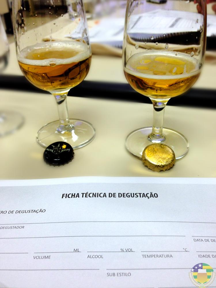Ficha técnica de degustação - AcervA Goiana