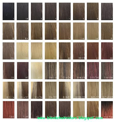 Shades Of Brown Hair Colour Chart. Blonde Hair Color Chart