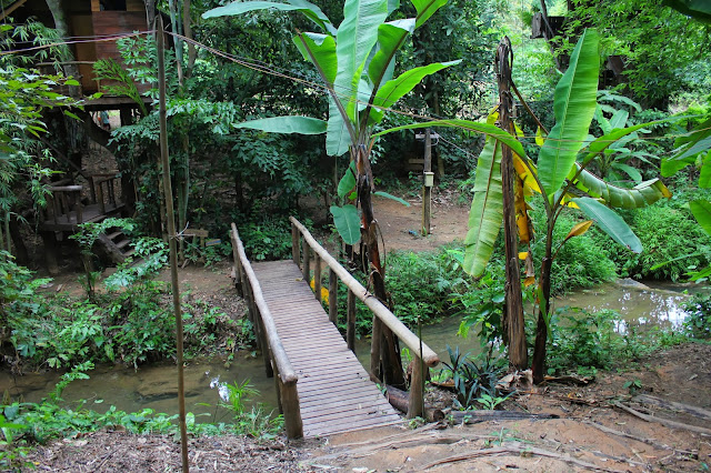 Bridge jungle Thailand