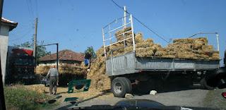 Village style of traffic jam