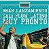 Cali Flow Latino estrena tema para la Copa América