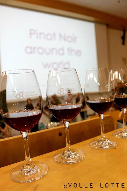 Pinot Noir, Spätburgunder, Caro Maurer, Verkostung, Blindverkostung
