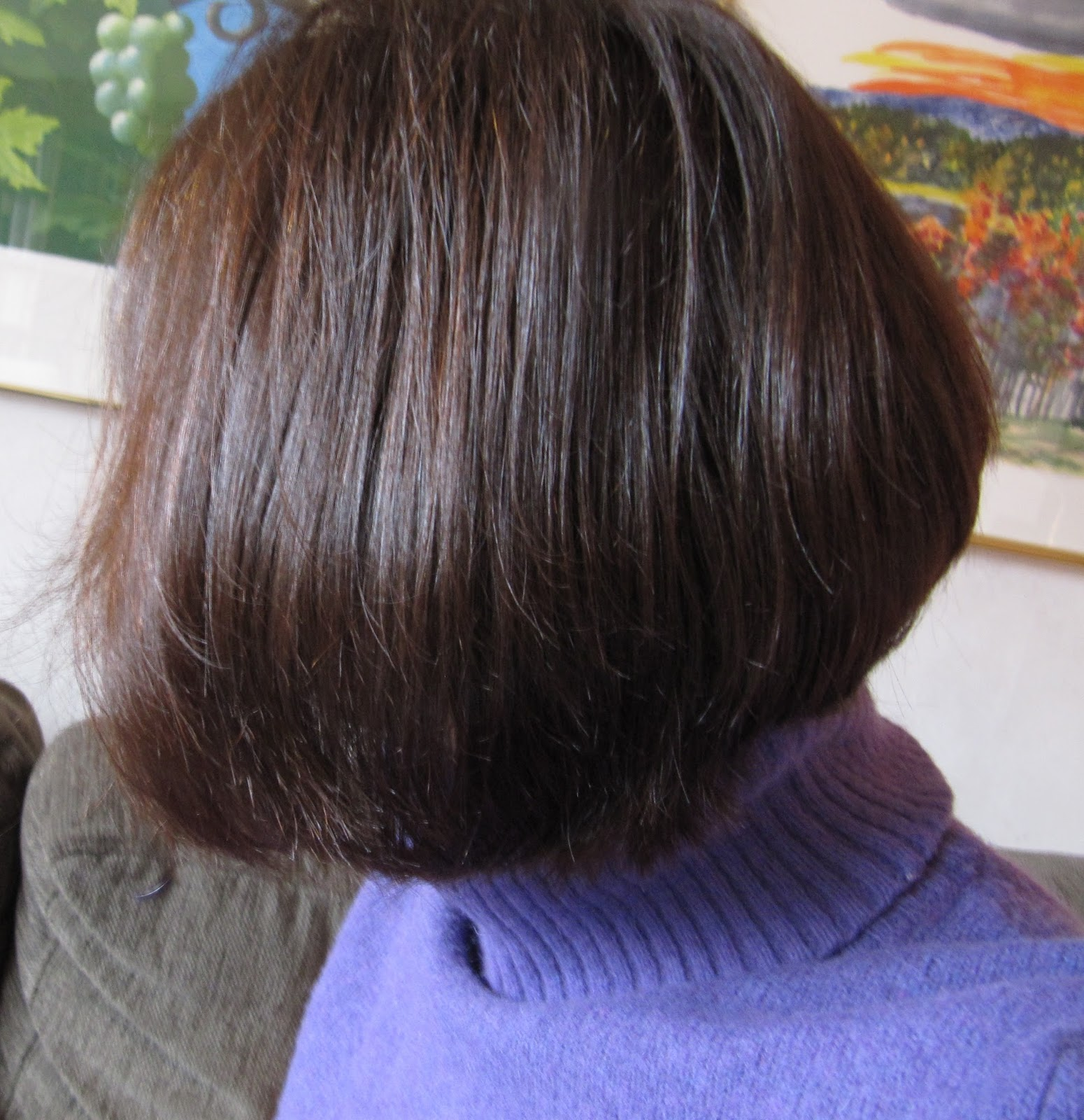 färga råttfärgat hår