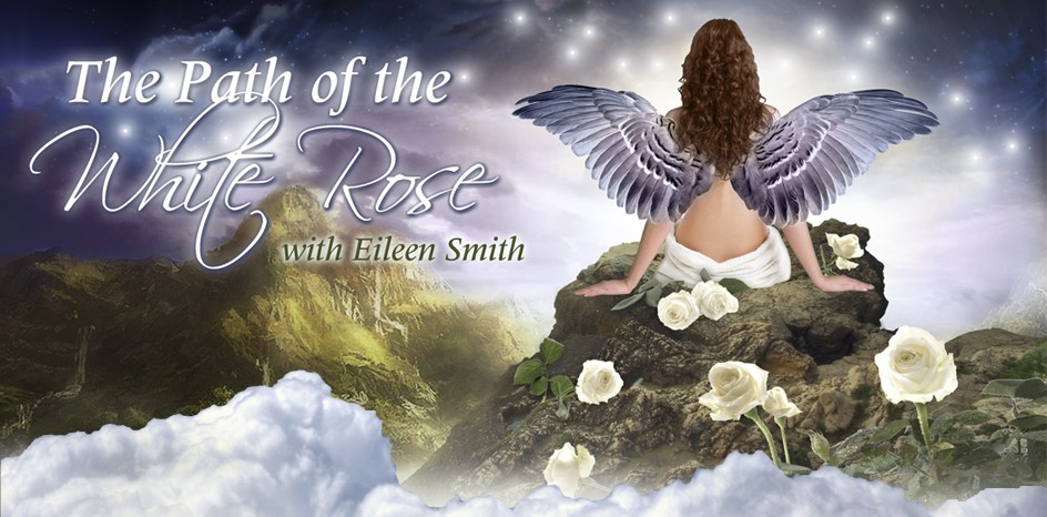 The Path of the White Rose