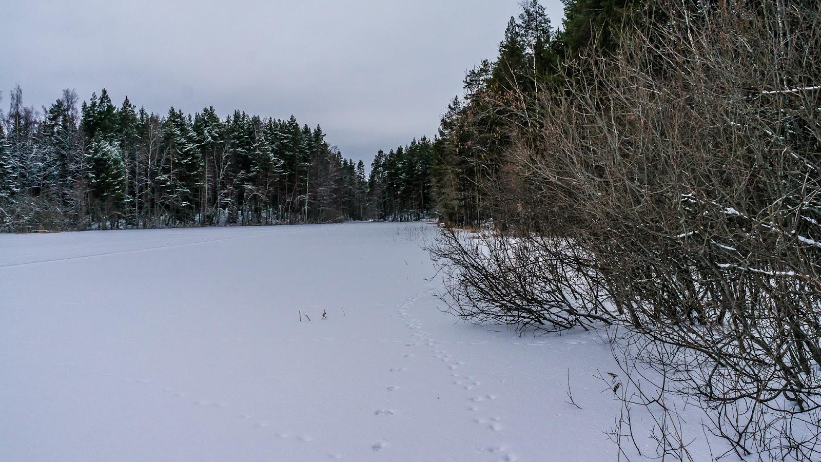 Särkkä-2014-01-26