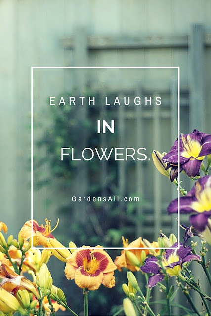 Best Gardening Quotes by Gardens All