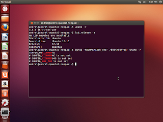 ubuntu 12.10 non-pae