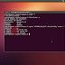 How To Install Ubuntu 12.10 On Non-PAE CPU