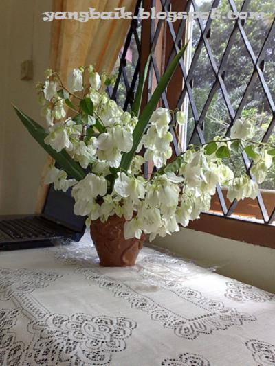 Bunga hiasan
