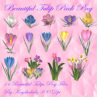 Beautiful Tulip pack PNG tubes