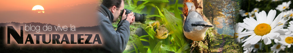 Blog de Vive la Naturaleza