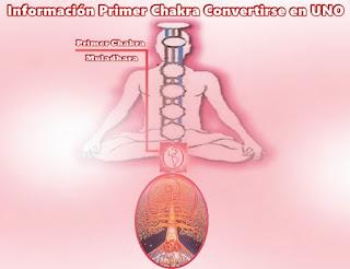 Hoy presentaremos información acerca de nuestro Primer Chakra, luego hablará Gaia sobre el suyo.