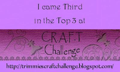 Top 3 at C.R.A.F.T.