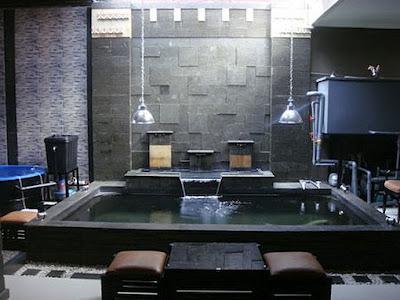 tina art designer ii: kolam minimalis batu alam & bonsai