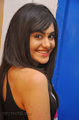 Adah Sharma Photos at Heart Attack Audio Success meet-thumbnail-20