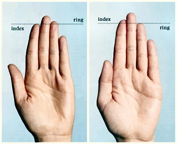 researchers say if a man s index and ring fingers are about the same