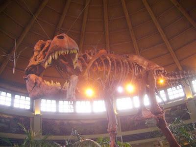 USJ・ジュラシックパーク・ティラノサウルスの骨格標本