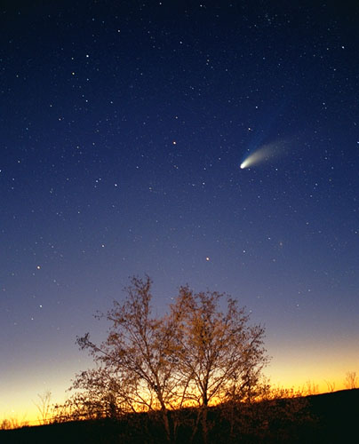 The Learned Turtle: New comet to see in 2013