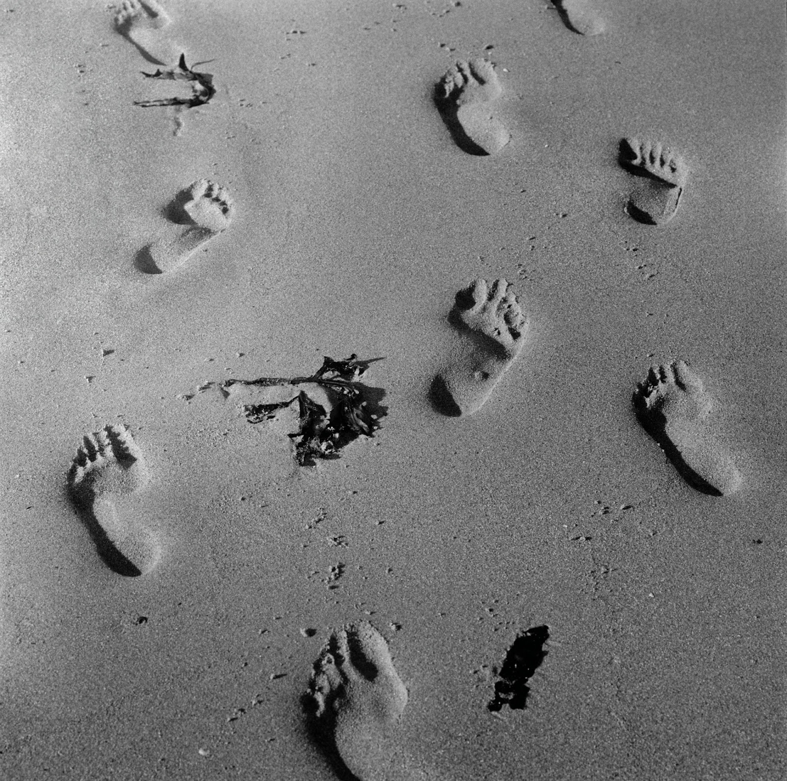 Photograph, Stuart Franklin: Northumberland. Footprints on Newton Beach. 2004.