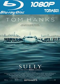 12 - Sully (2016) [BRRip 1080p/Subtitulado] [Multi/MG]