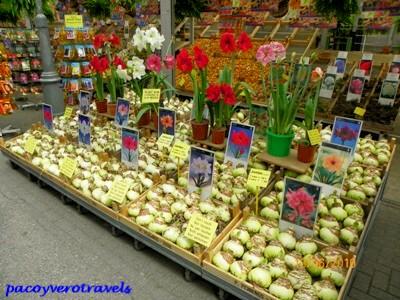Mercado de flores de Singel