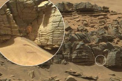 Hipernovas: Internautas Encontram Caranguejo em Marte [Imagem]
