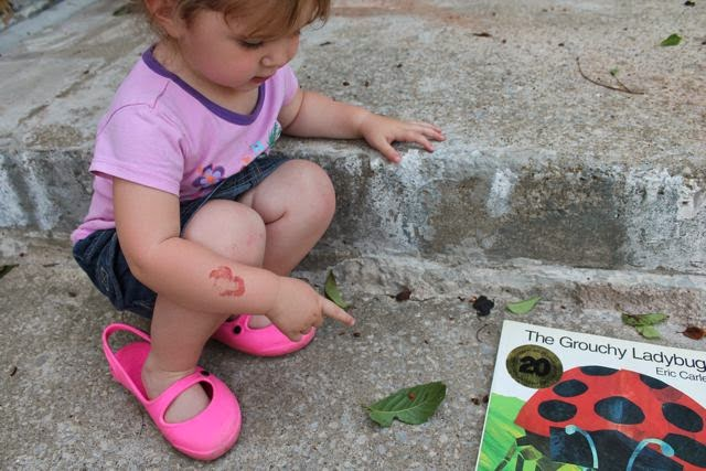 The Grouchy Ladybug by Eric Carle activity via www.happybirthdayauthor.com