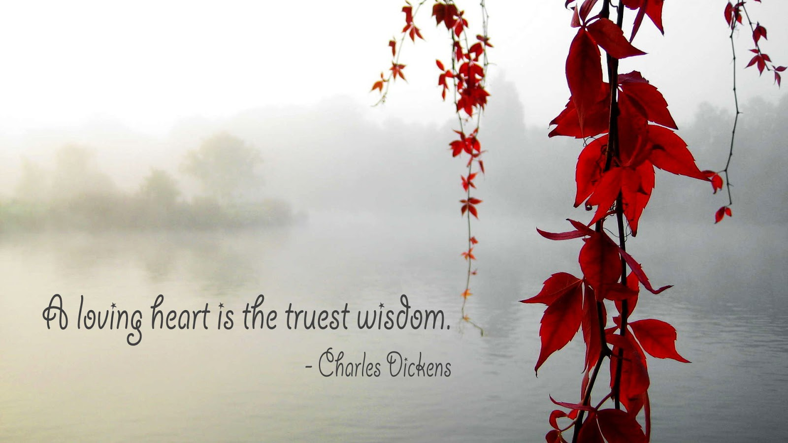 Love quote by Charles Dickens on a picture of foggy lake with red leaves