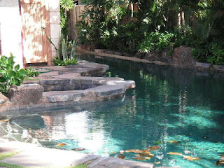 Professional Pool Designers indoor swimming pool design ideas for your home Premier Swimming Pool Designer And Contractor Serving Oahu Hawaii For 40 Years Experienced Professional Pool Designer And Contractor Steven Von Owner Of