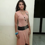 Bhanu Sri Hot Photos at Veedi Pourusham Movie Press Meet 12