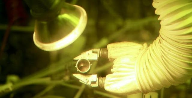 By producing 50 grams of plutonium-238, Oak Ridge National Laboratory researchers have demonstrated the nation's ability to provide a valuable energy source for deep space missions. Credit: ORNL