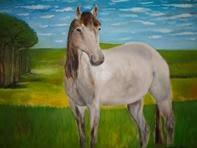 Cavalo no prado
