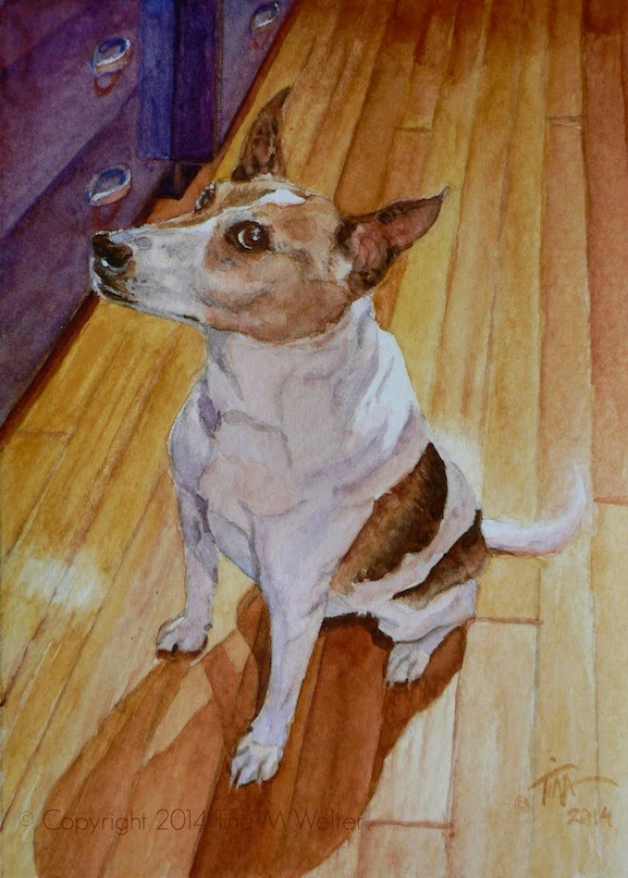 """Kirk"" 7""x 5"" watercolor on 140lb cold press paper, © 2014 Tina M. Welter. 12 year old terrier mix, white with brown patches.  Adorable personality.  Kirk dog is waiting for his supper with intense hope."