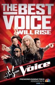 The Voice 4×12